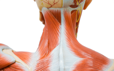 Neck Pain- What can you do about it?